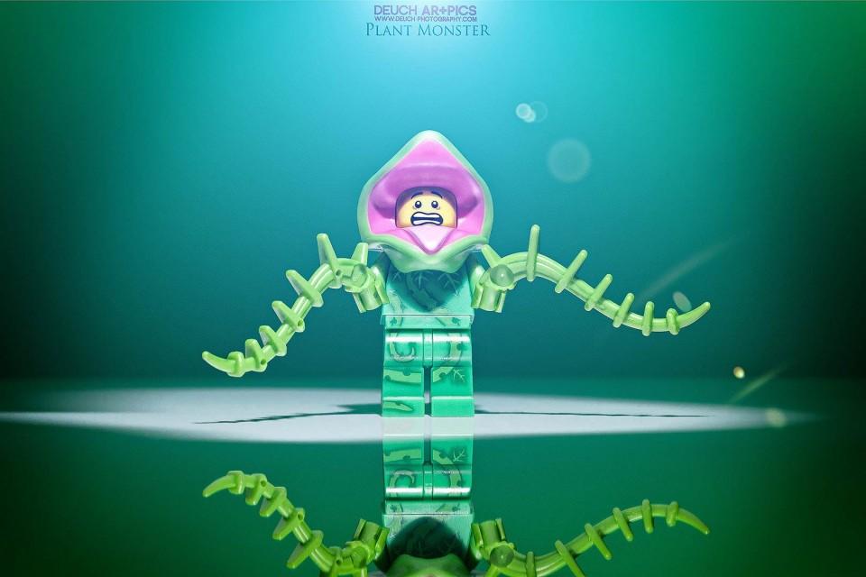 photographe-pontarlier-besancon-plante-man-lego-deuch-photography